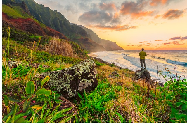 5 Reasons You Should Work As A Dentist In Hawaii